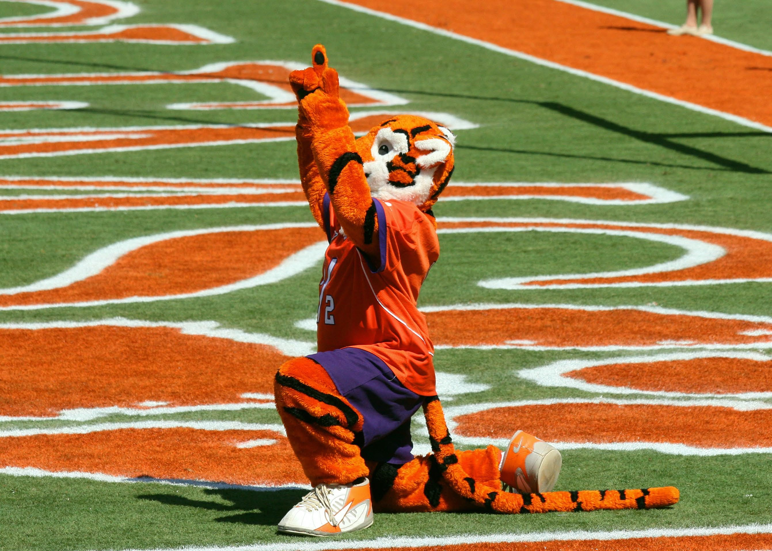 Clemson tiger clemson tigers clemson athletics clemson