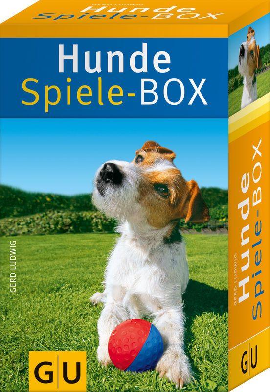 Bernsteinketten Kuhldecke Hundezubehor Showleinen Hundebekleidung