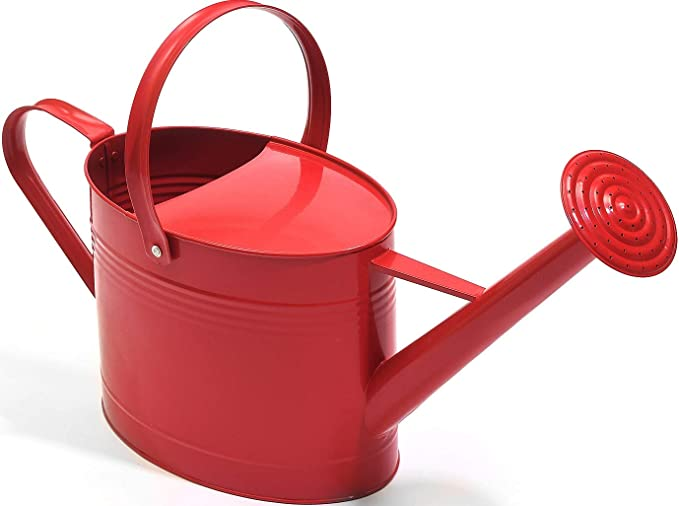 Amazon Com Ashman Red Watering Can For Outdoor And Indoor Plant Watering Use With 3 75 Litre Capacity Garden Outdoor Watering Can Indoor Plants Canning
