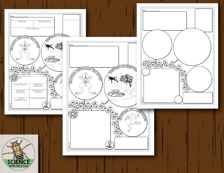 Biology Doodle Diagram Notes Bundle Great For Distance Learning Science Classroom Science Doodles Diagram