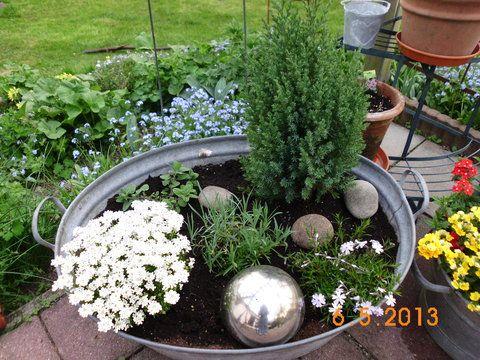 Minigärtchen 2013 - Teil 2, FRÜHLING - Seite 101 - Gartengestaltung ...