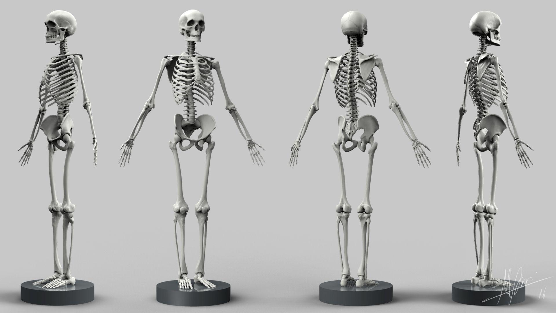 12 besten Digital Sculpting Bilder auf Pinterest   Digital sculpting ...