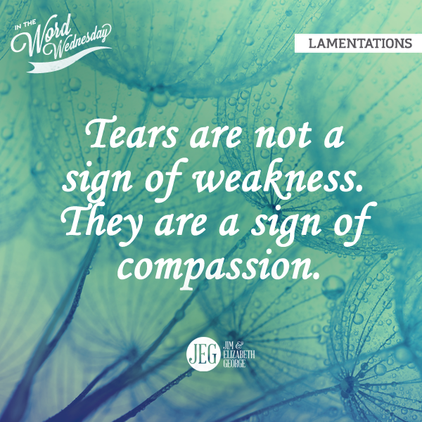 Lamentations Is About Grief Tears Are Not A Sign Of Weakness They Are A Sign Of Compassion Christian Quotes Inspirational Scripture Quotes Christian Quotes
