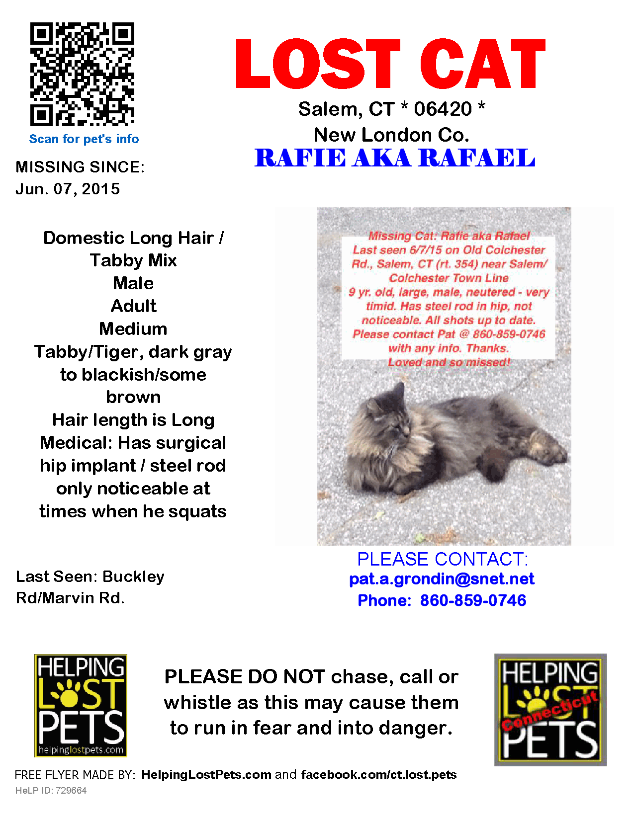 Lost Cat Male Salem Ct Usa 06420 Lost Cat Cats Police Canine