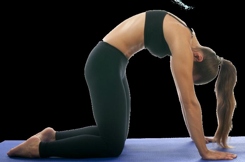 Pin on Sexy Yoga