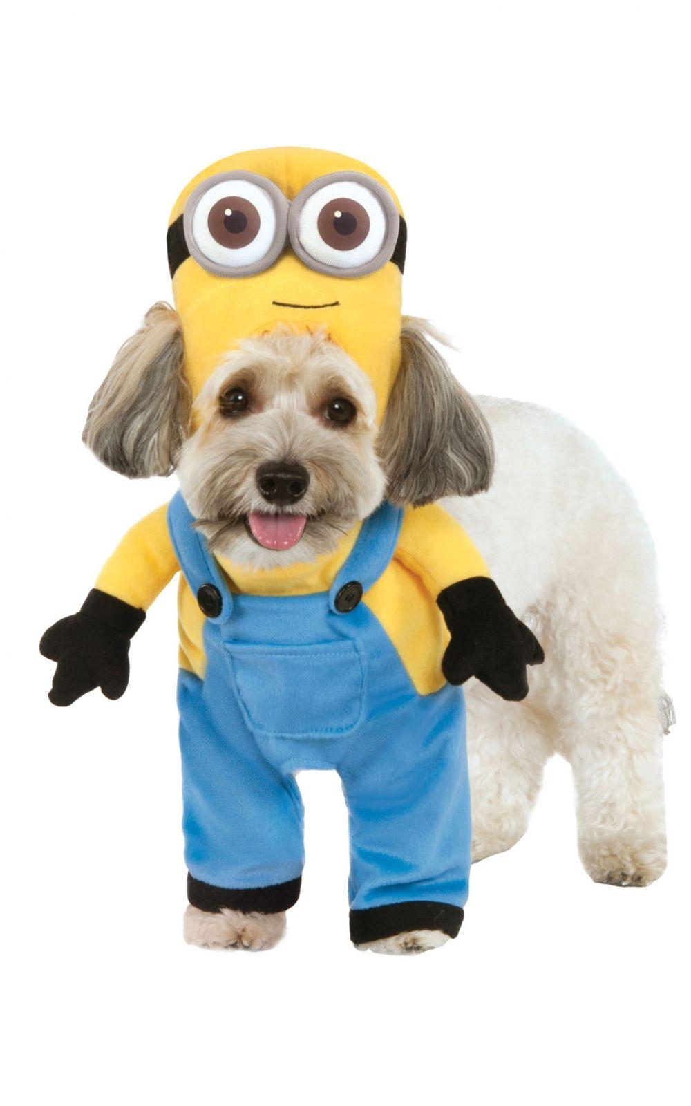 Minion Bob Minion Dog Costume Pet Halloween Costumes Pet Costumes