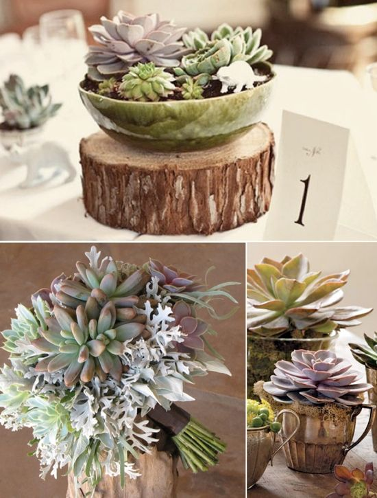 I love the earthy elements i dont want mine to be a classic purple and green wedding theme wedding ideas wedding trends and wedding galleries junglespirit Image collections