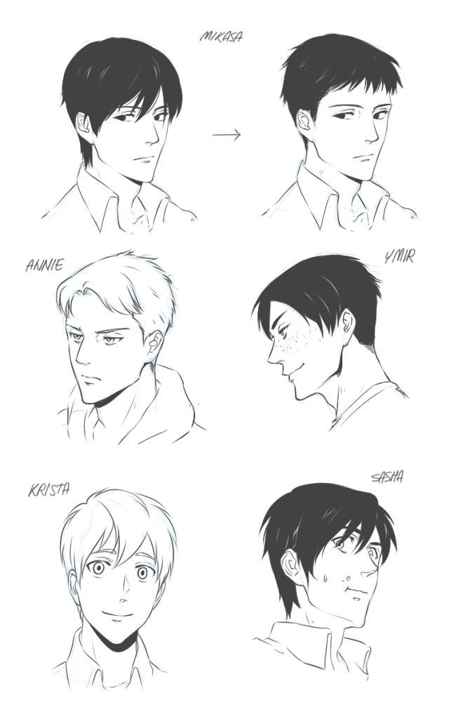 Pin By Bluewing Tempesta On My Precious Attack On Titan Anime Genderbend