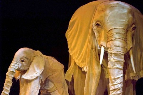 Pin by Alfie Frog on Costume Creations | Elephant costumes