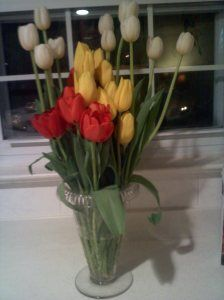 Nothing beats the winter blues better than some simple tulips in your kitchen.