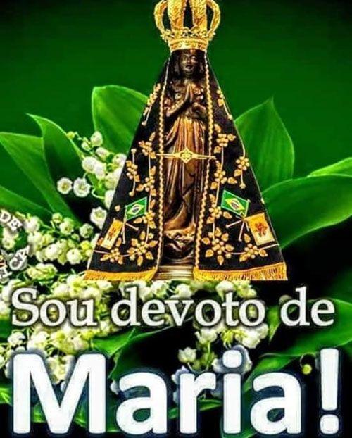 Sou Devoto De Maria Msg De Boa Noite Fotos De Nossa Senhora