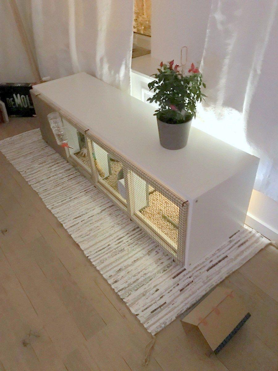 Kallax Rabbit House Bunny Care Bunny Cages Indoor
