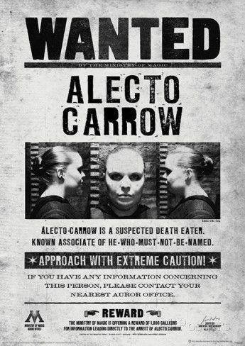alecto carrow descriptive essay