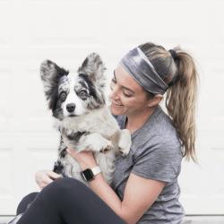 Navy Corgi Washington Dc Dog Lifestyle Blog In 2020 Corgi Lifestyle Blog Dogs