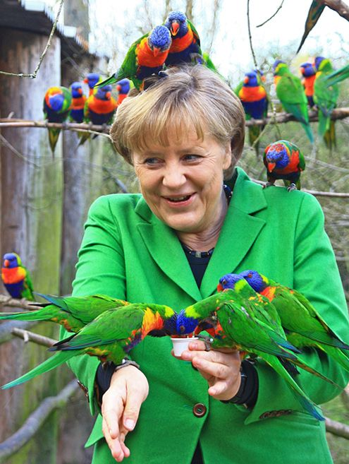 Das nennt man dann Sympathieträger(?) oder: Die Merkel hat einen Vogel, einen?