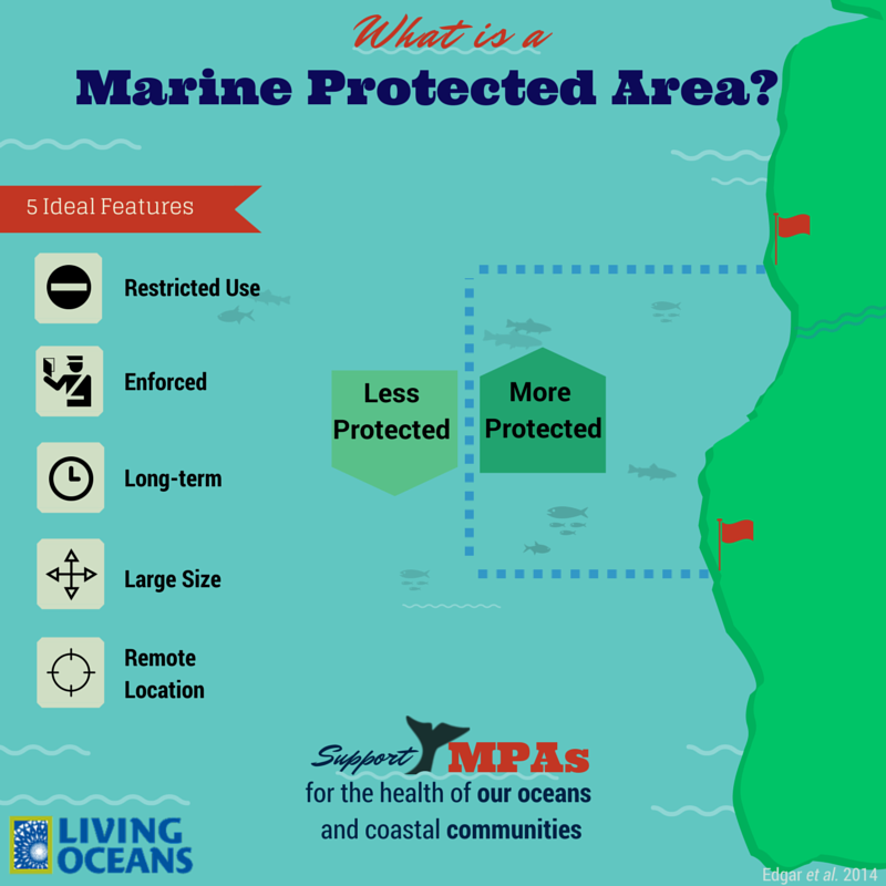 Stinapa Gives Information About Protected Marine Species: What Is A Marine Protected Area? Living Oceans Society