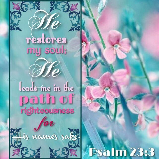 "He restoreth my soul: he leadeth me in the paths of righteousness for his name's sake."" Psalm 23:3 KJV 