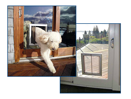 Pin On Dog Doors Our Products