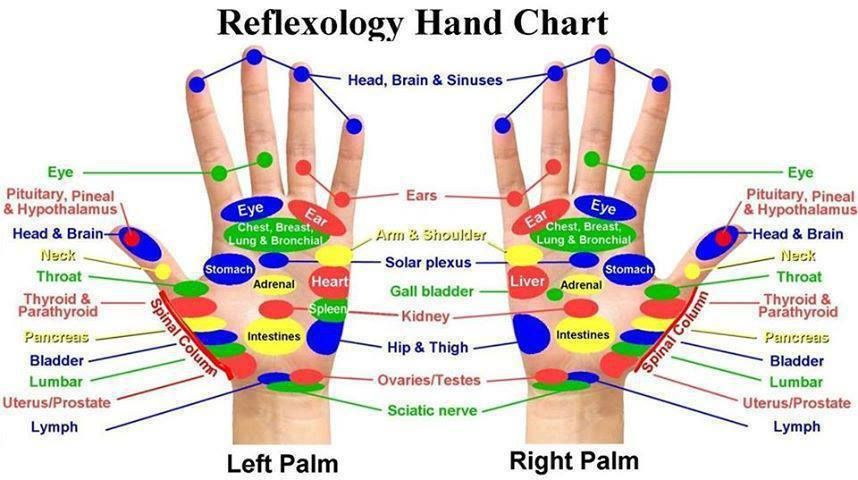 Pressure Points for Circulation | HAND REFLOXOGY CHART
