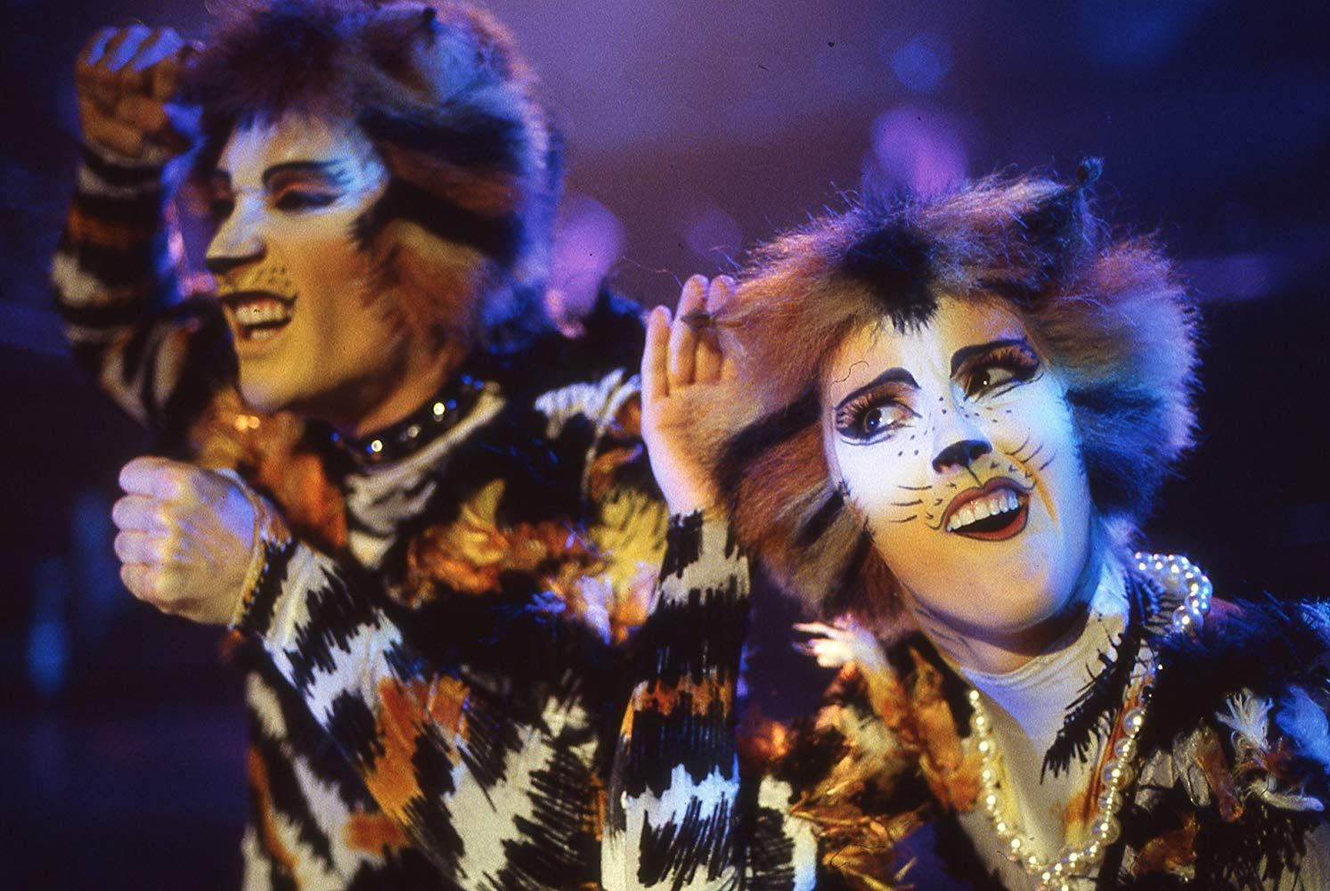 Cats (1998) in 2020 Cats the musical costume, Cat movie