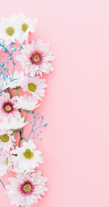 Wallpapers Iphone 9898 65039 Poster Bunga Lukisan Bunga Bunga Cat Air Amazing pink flower wallpaper