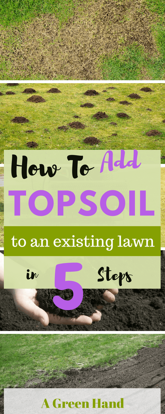 How To Add Topsoil To An Existing Lawn 5 Easy Steps Guide Adding Topsoil To Existing Lawn Can Be Quite Challenging Top Soil Growing Lawn Lawn And Landscape