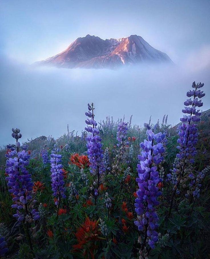 Landscape Photography, Landscape, Nature