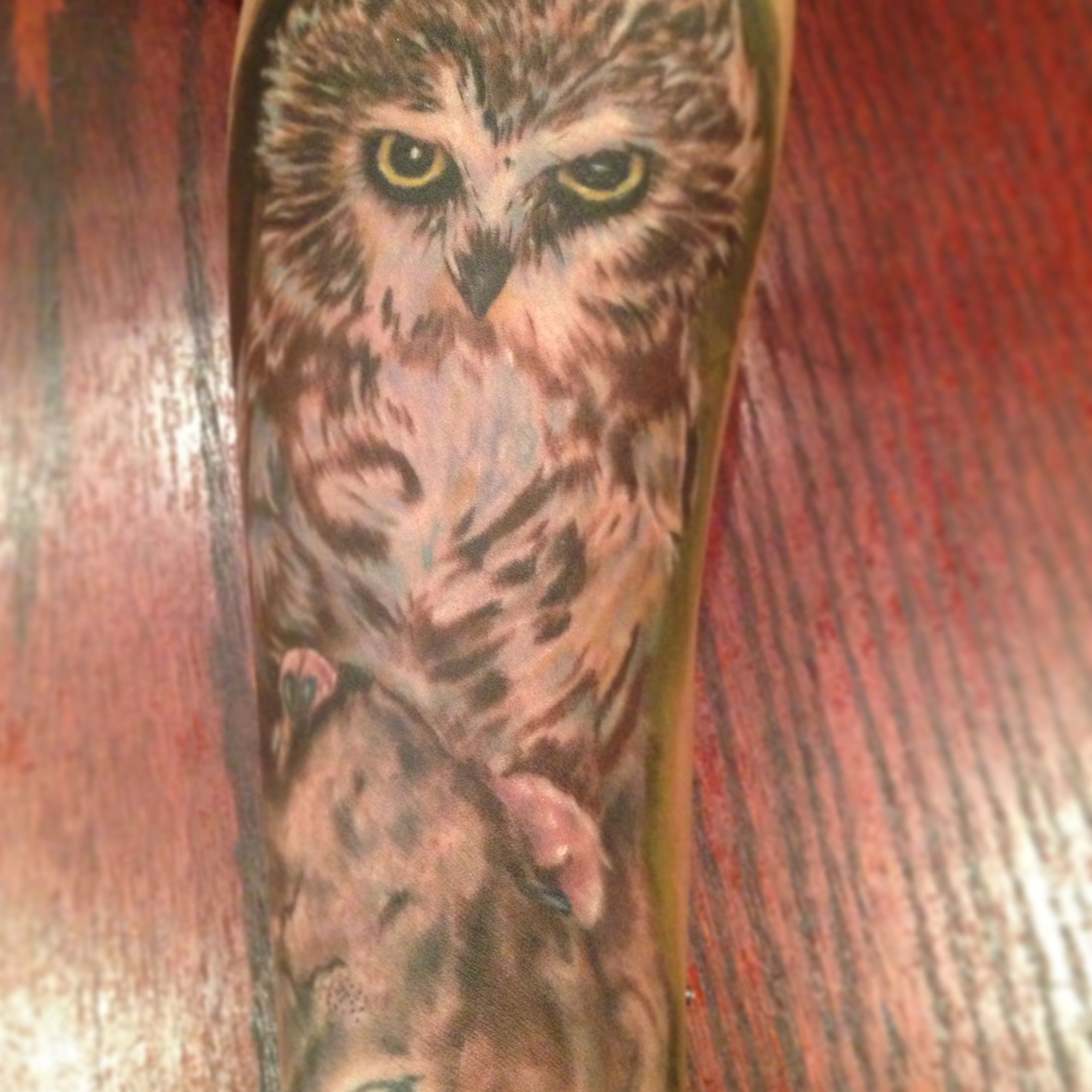 My owl tattoo. Realistic. I love it! Beginning to my half ...