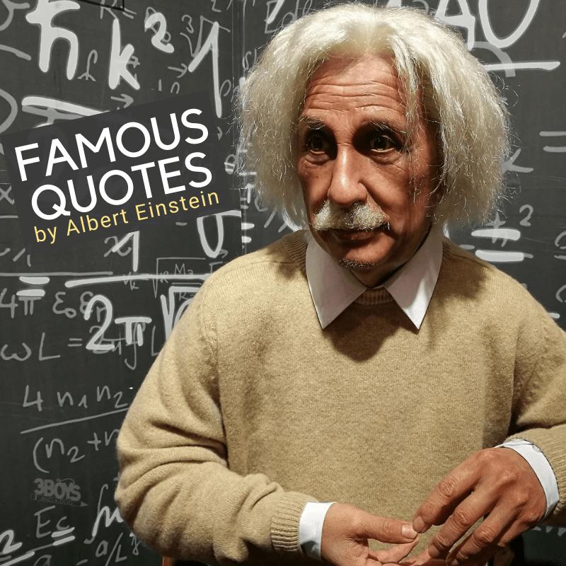 Albert Einstein Pebblego Famous Americans Einstein Student Board