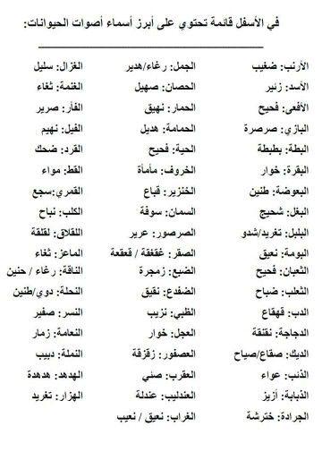 Pin By Soso On Arab Arabic Language Learning Arabic Learn Arabic Language