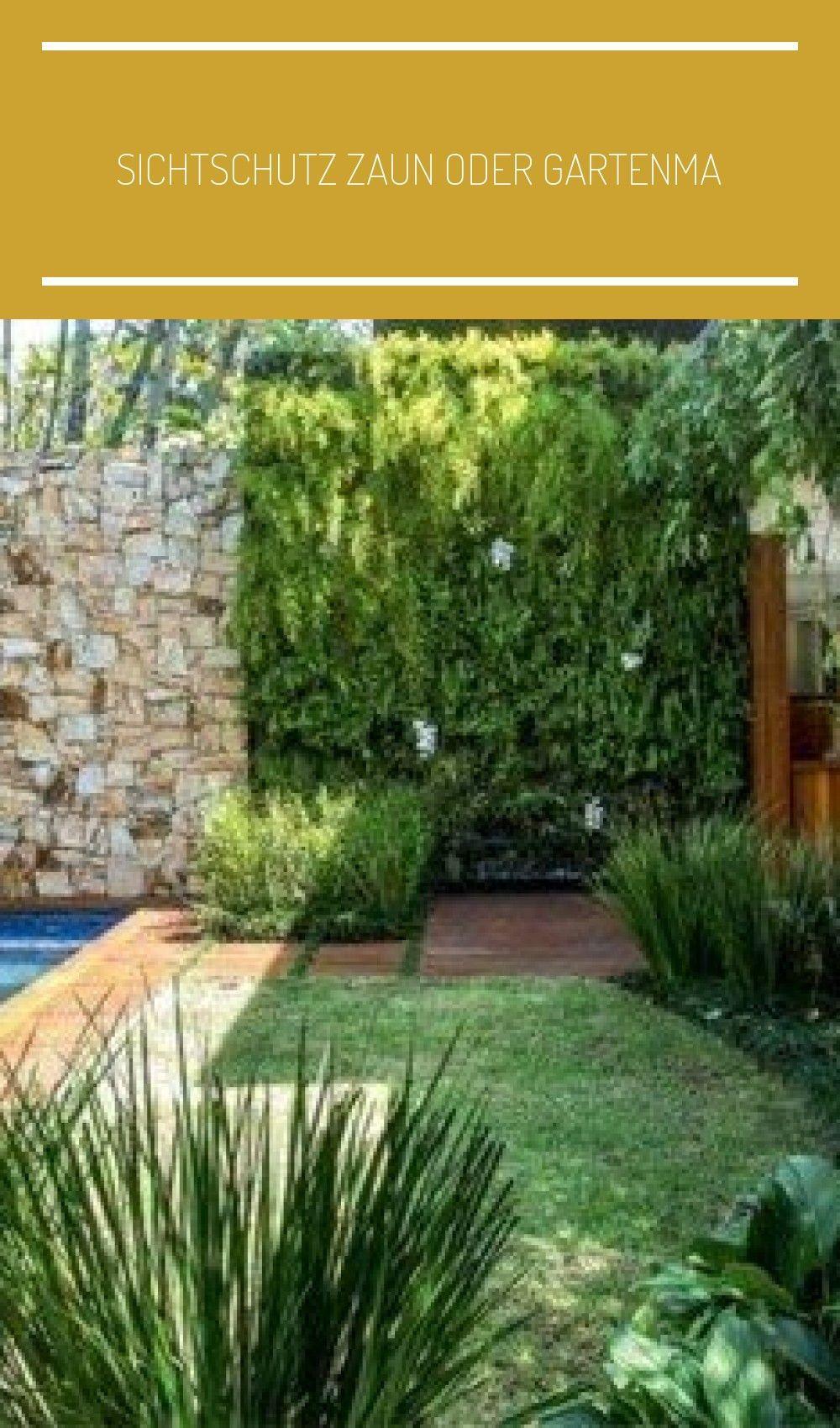 Privacy Fence Or Gardening In 2020 Garten Pflanzideen Garten