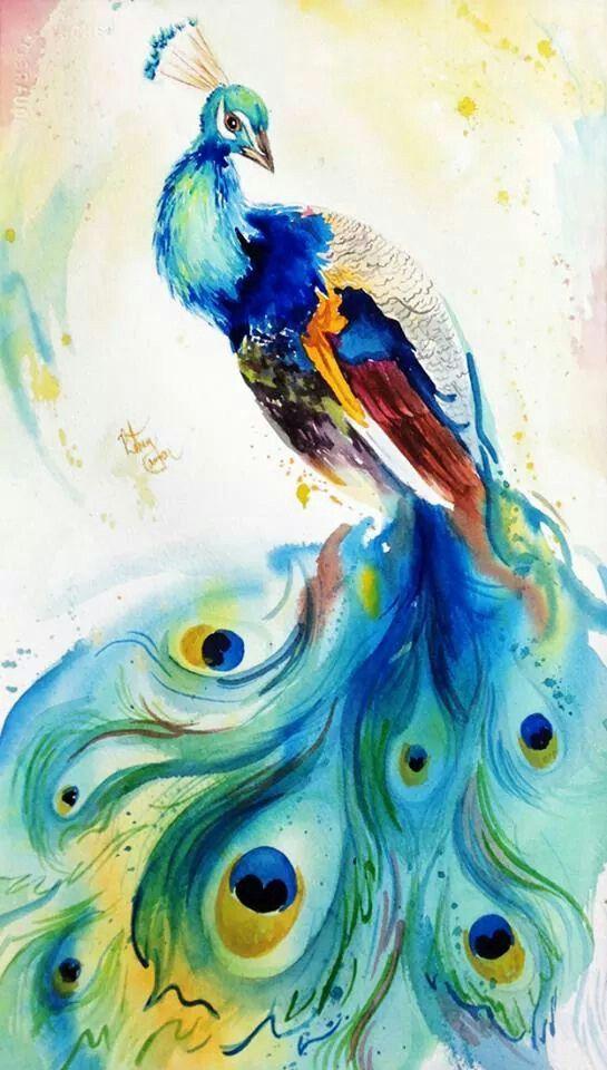 Peacock Watercolor Painting Pinturas Simples De Aquarela