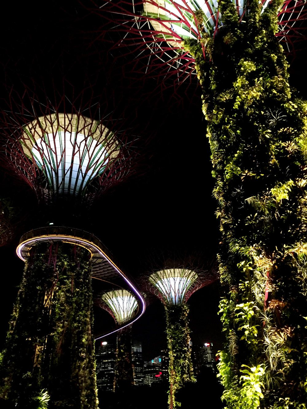 Supertree Grove And The Singapore City Skyline Gardens By The
