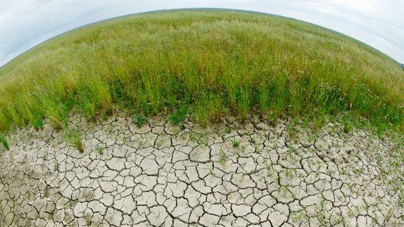 Klimaschutz: Länger zu warten können wir uns nicht leisten