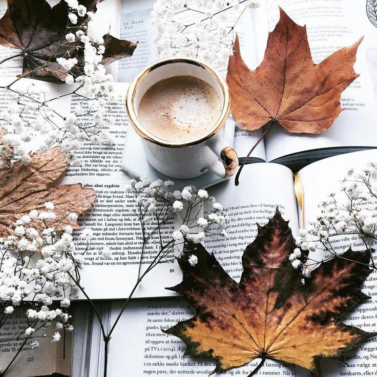 "Birgitte on Instagram: ""Happy Monday �. Today is a busy workday for me... #coffeeandbooks #inspiredbyautumn . . . . . . . . . . . . . #ig_coffee #coffeeandseasons…"""