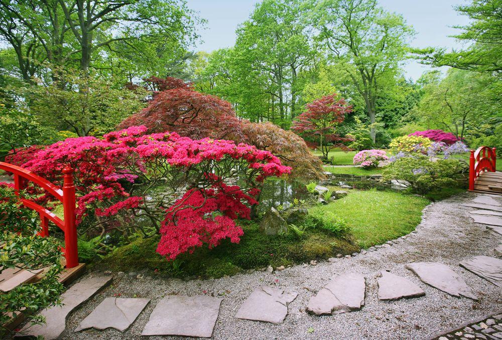 Les secrets pour un jardin paradisiaque jardines y patios decoraciones de jard n jardines y - Jardines japoneses pequenos ...