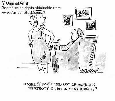Kidney Transplant Cartoon Kidney S Pinterest Organ