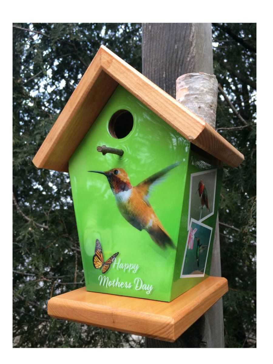 Hummingbird Birdhouse Bird houses, Bird houses diy