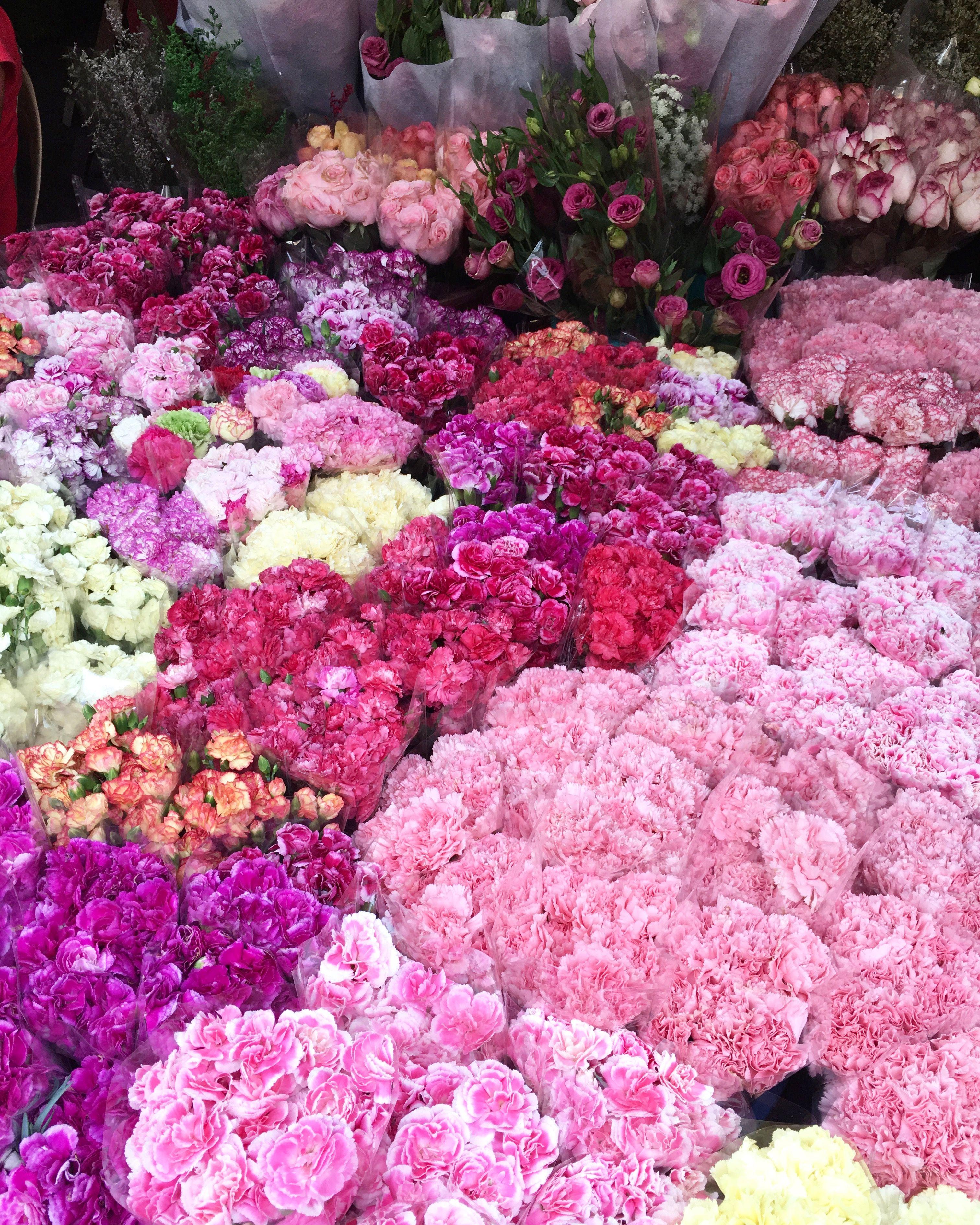 Dangwa Flower Market Manila Flowers Pinterest Flower Market