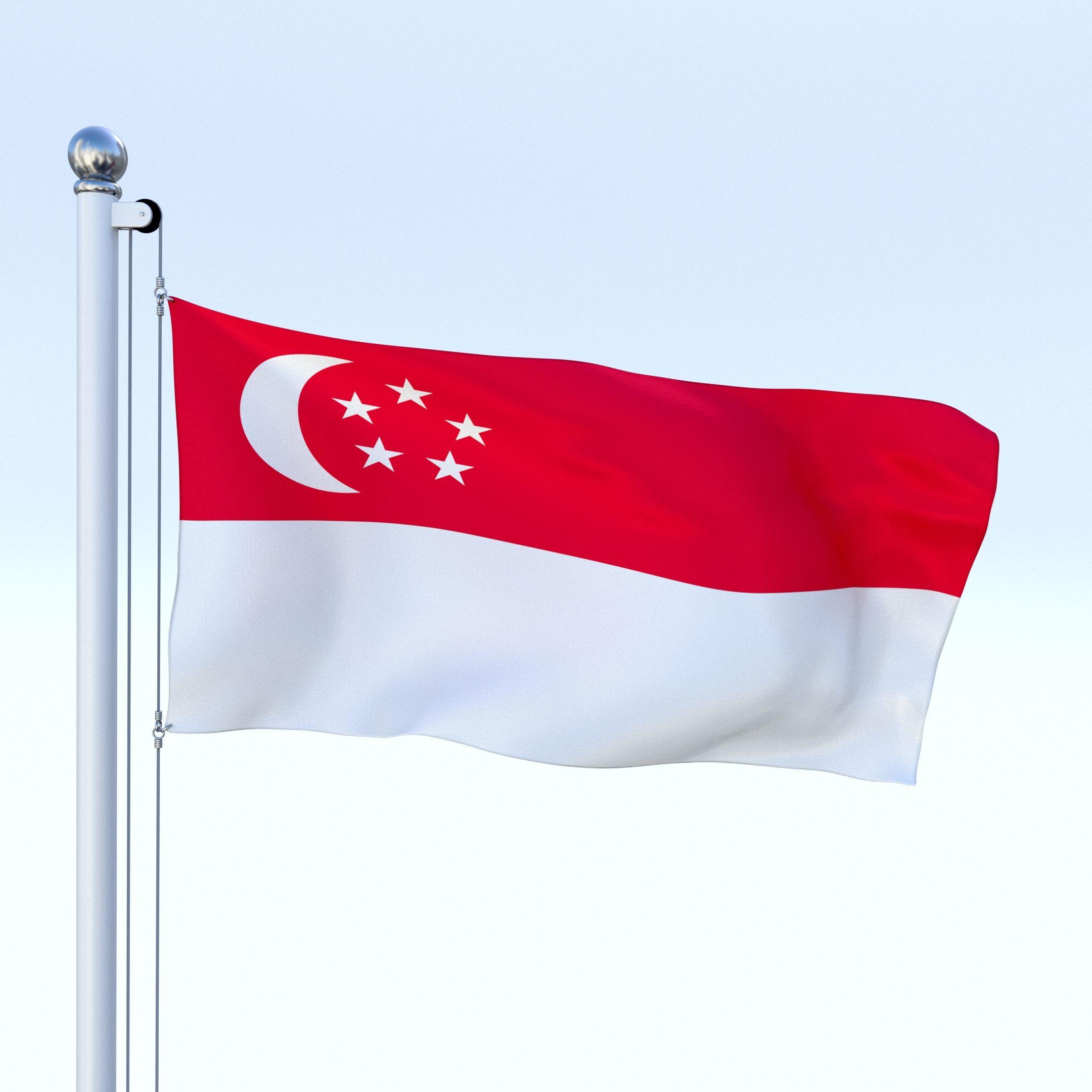 Singapore Flag Novelty Car License Plate