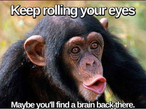 Funny Rolling Eyes Meme : Incredibly insulting but funny memes memes hilarious and