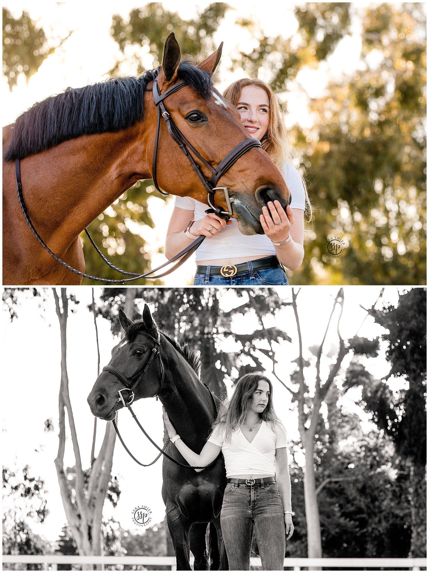 Black Background Horse Rider Equine Photographer Southern California Sara Shier Photogra Huntington Beach California Horse Photoshoot Ideas Equine Photographer