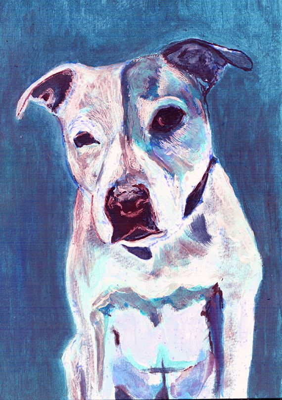 Staffordshire Bull Terrier Dog Wallart Print Blue Staffie - Game of thrones pet paintings