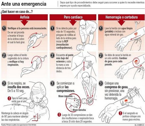 84606583e54 Resultado de imagen de manual de primeros auxilios para niños | sos ...