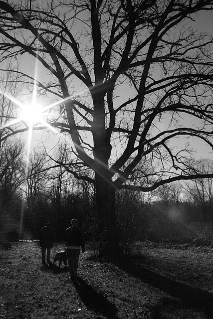 Walking with my dad and fiance and the dogs after Christmas. 2011.