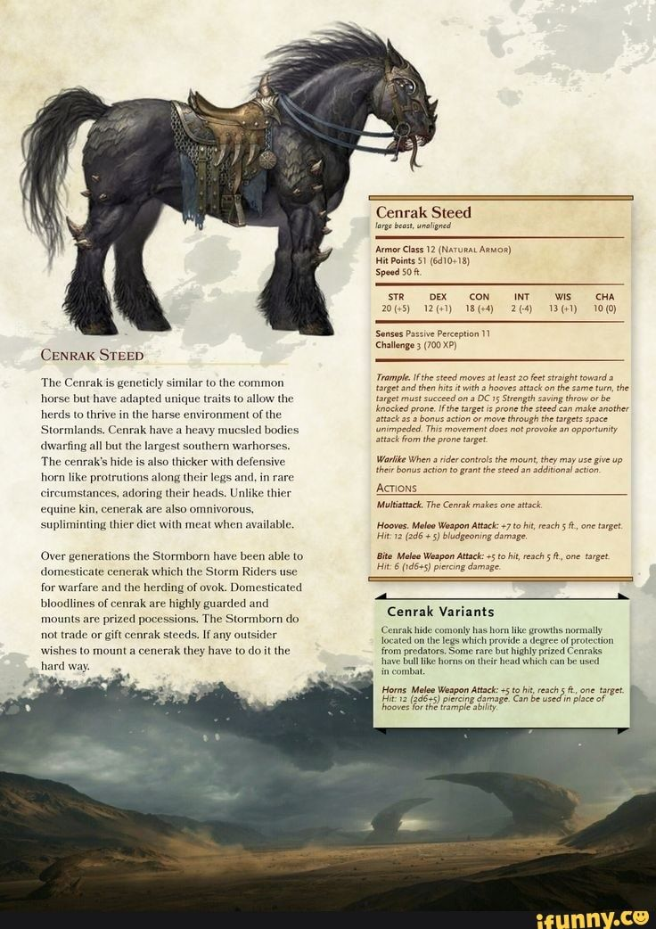 CENRAK STEED 'The Cenrak is geneticly similar to t