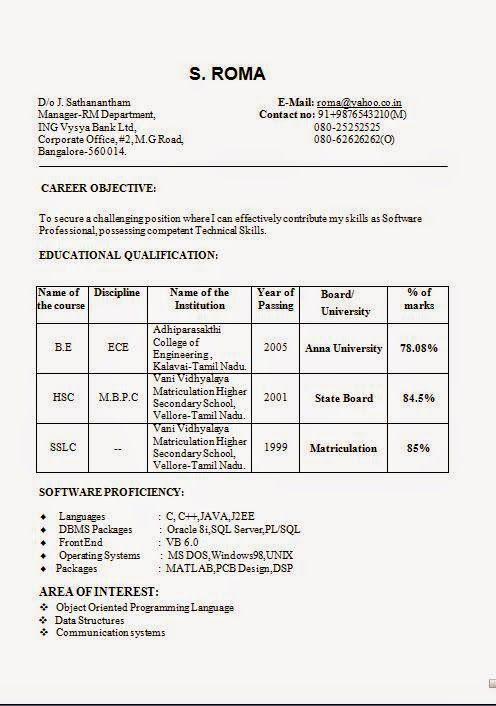 formato de curriculum vitae Sample Template Example of ExcellentCV