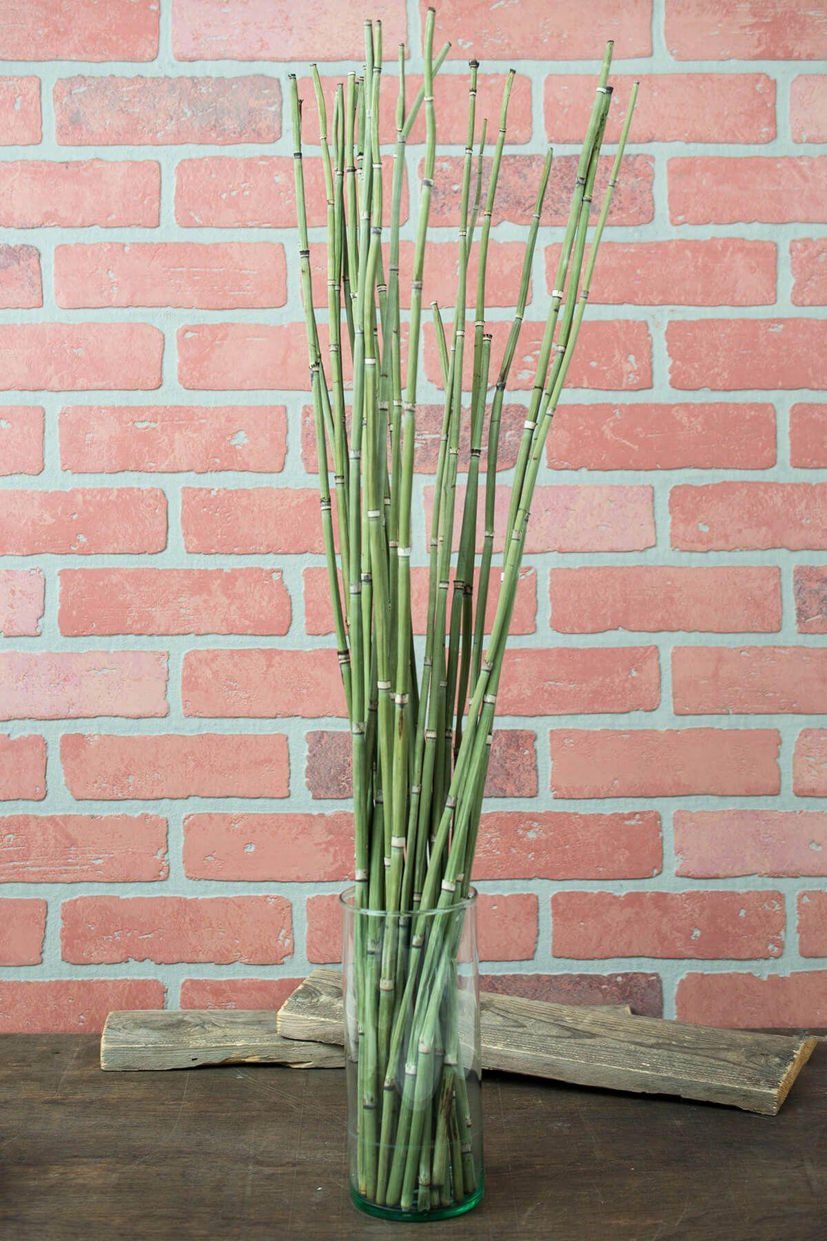 decorative twigs