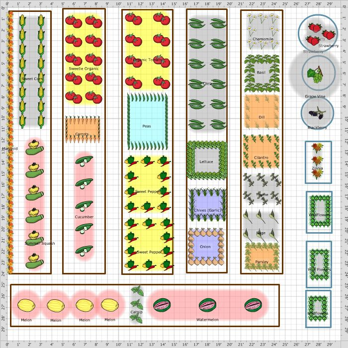 Backyard Vegetable Garden Layout Ideas | Flower garden ...