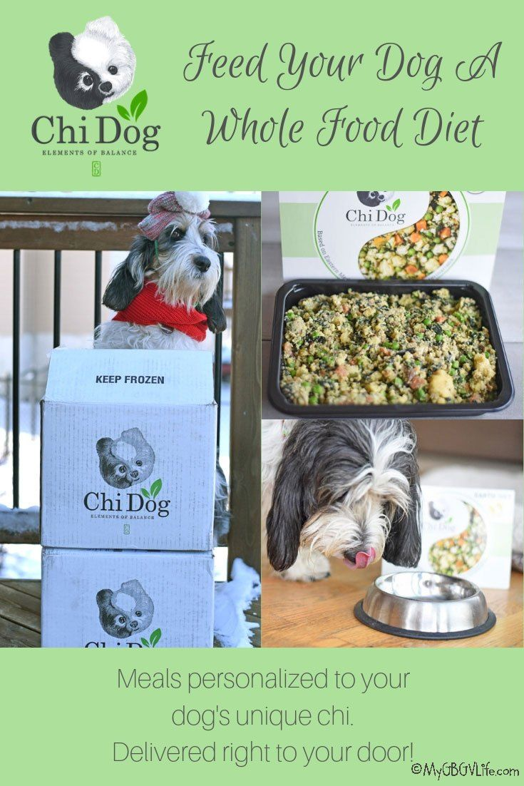 A Whole Food Diet For Your Dog From Chi Dog Chi dog